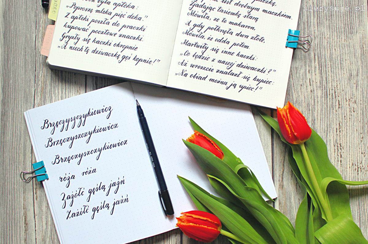 sierysuje.pl pisowania polskich liter