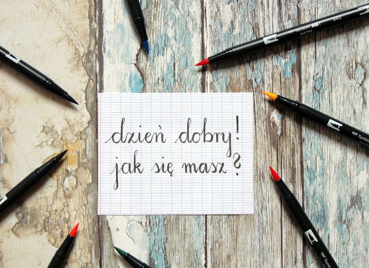 sierysuje.pl kaligrafia brush lettering
