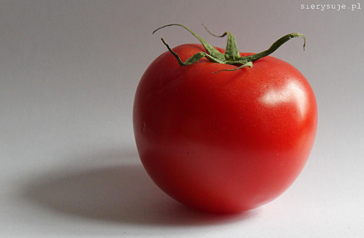 sierysuje.pl jak się nauczyć rysować pomidor