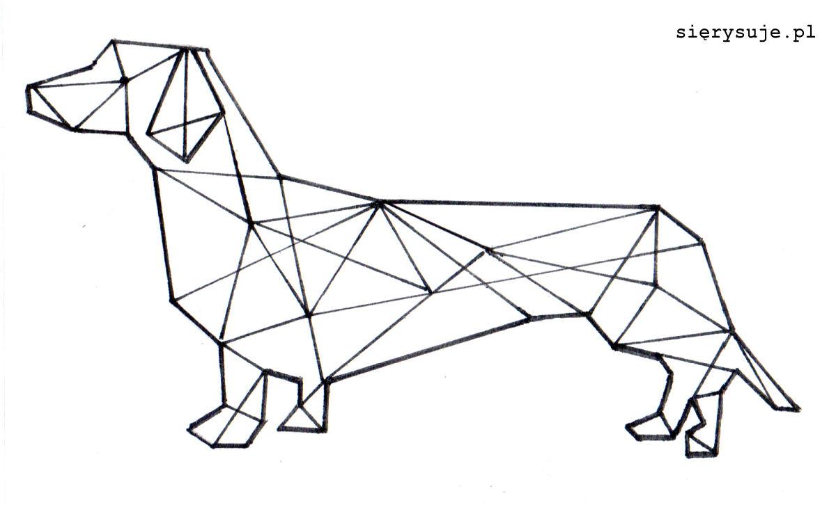 sierysuje.pl rysunek geometryczny jamnik