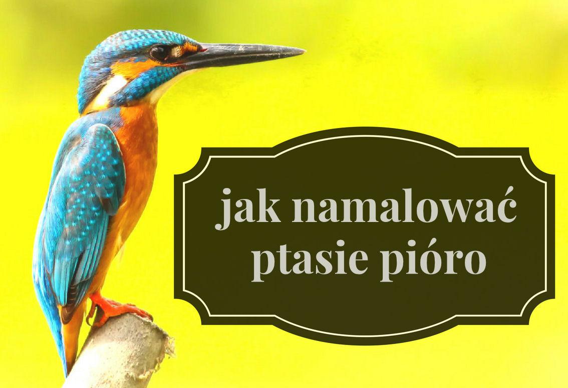 sierysuje.pl jak namalować akwarelami ptasie pióro