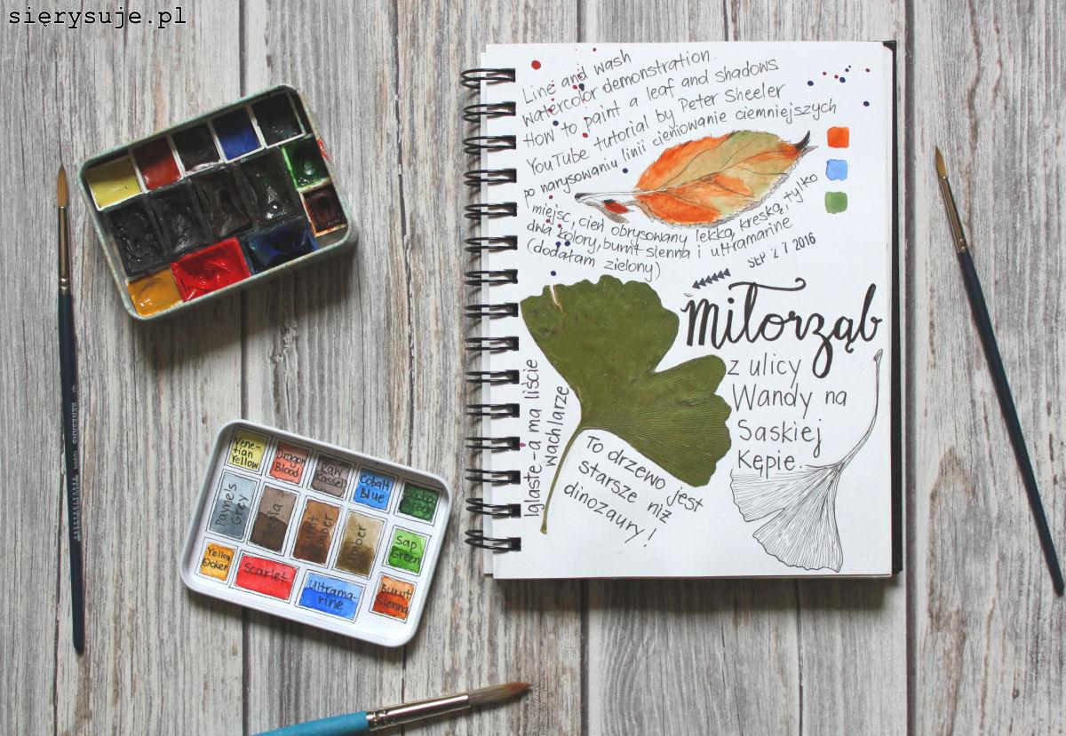 sisryeuje.pl blog o rysowaniu akwarele malowanie rysowanie