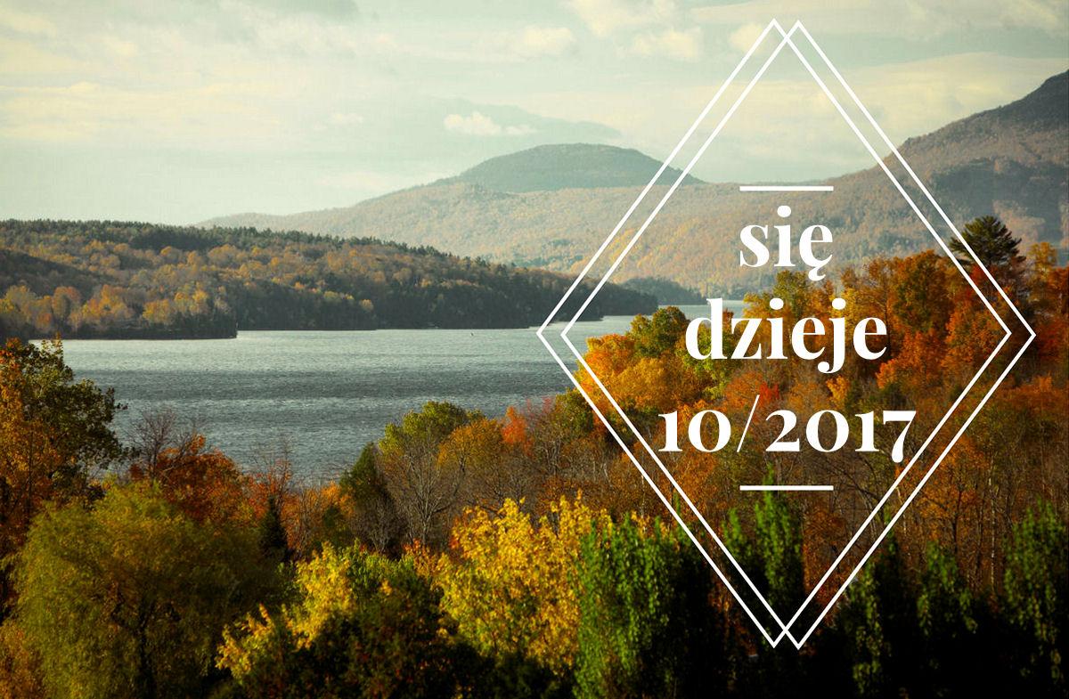 sierysuje.pl się dzieje październik