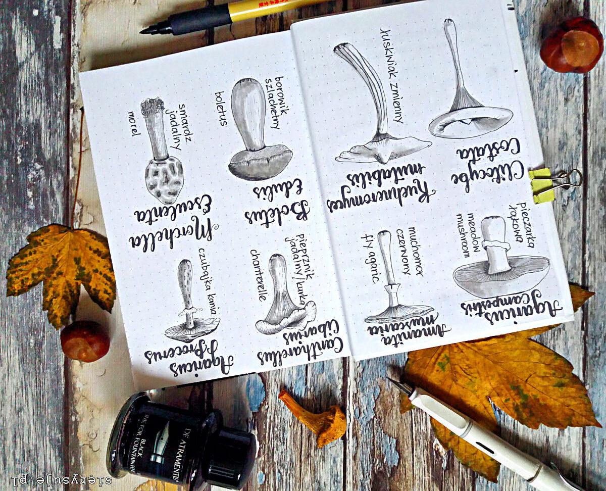 czarny atrament de Atramentis i szary brush pen Koi