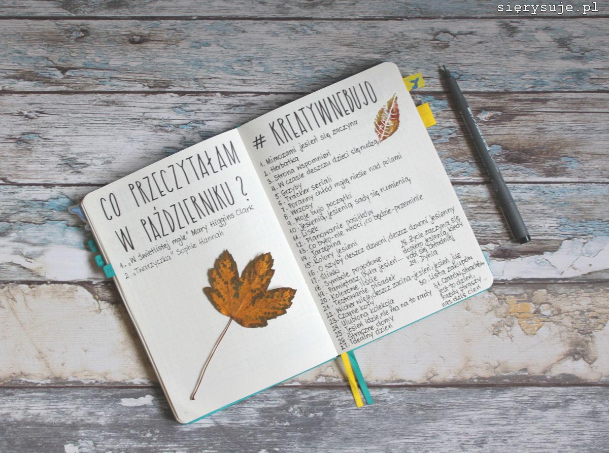 sierysuje.pl minimalistyczny bullet journal
