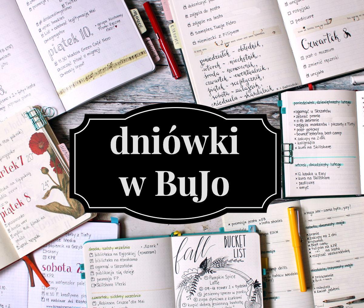 sierysuje.pl bullet journal dniówki