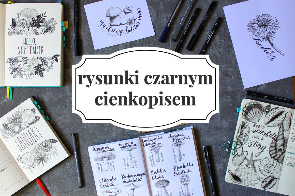 sierysuje.pl line drawing rysunki czarną kreską