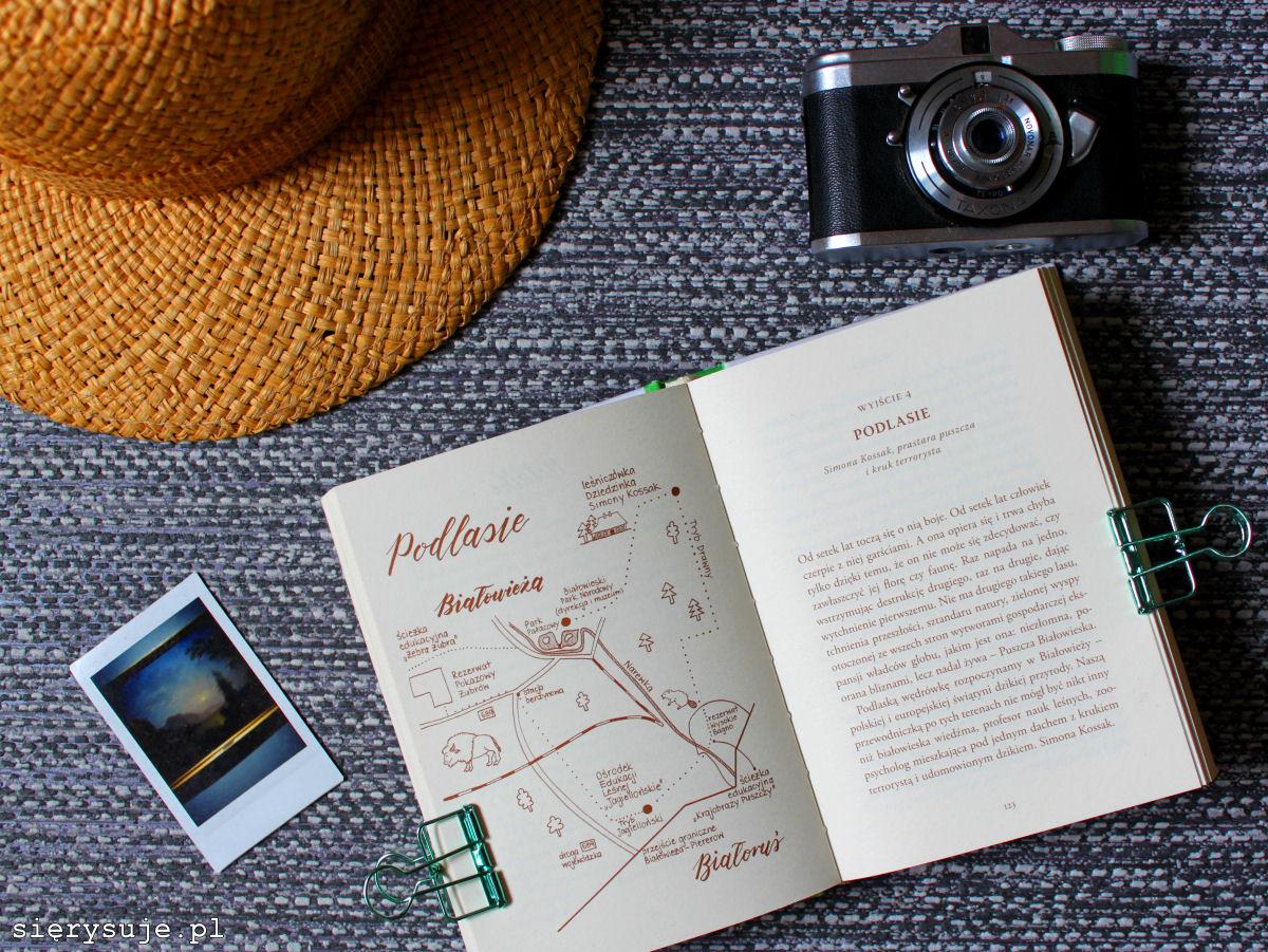 sierysuje.pl ilustracje książka Weź wyjdź mapka