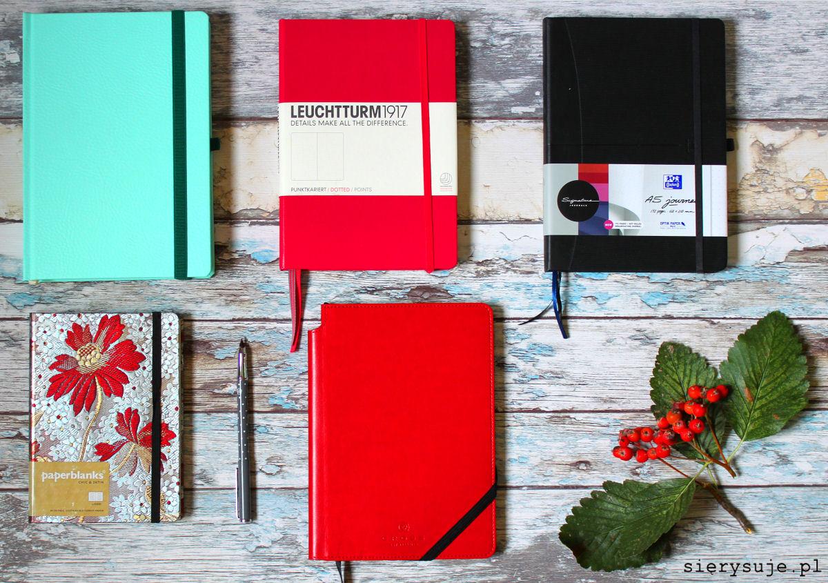 sierysuje.pl nowy bulet journal nowe bujo