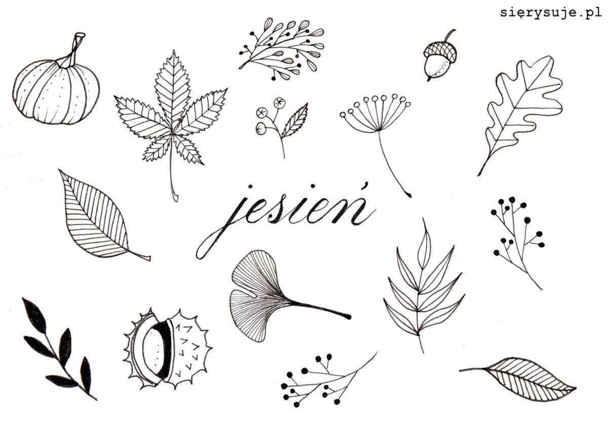 sierysuje.pl jesienne rysunki jesień doodle doodles