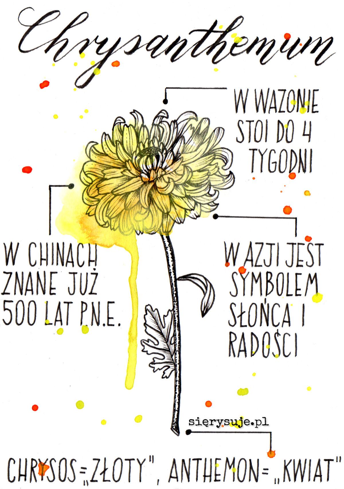 sierysuje.pl inktober podsumowanie rysunek