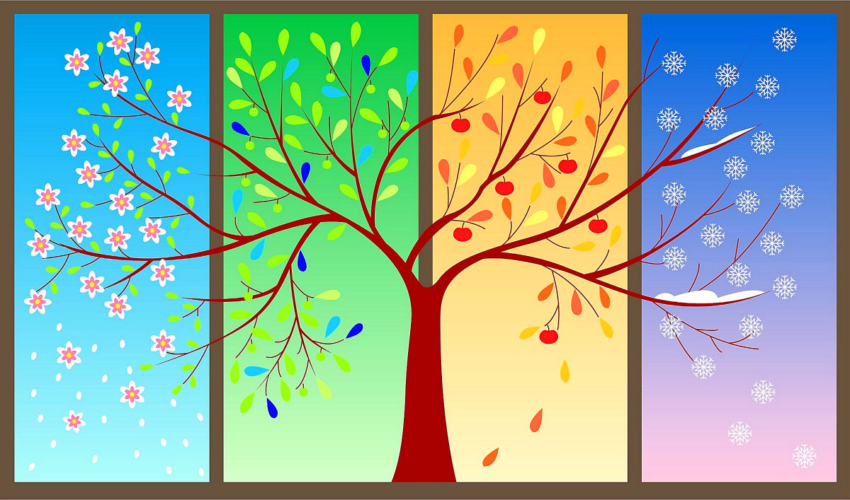 sierysuje.pl rysunek drzewo cztery pory roku