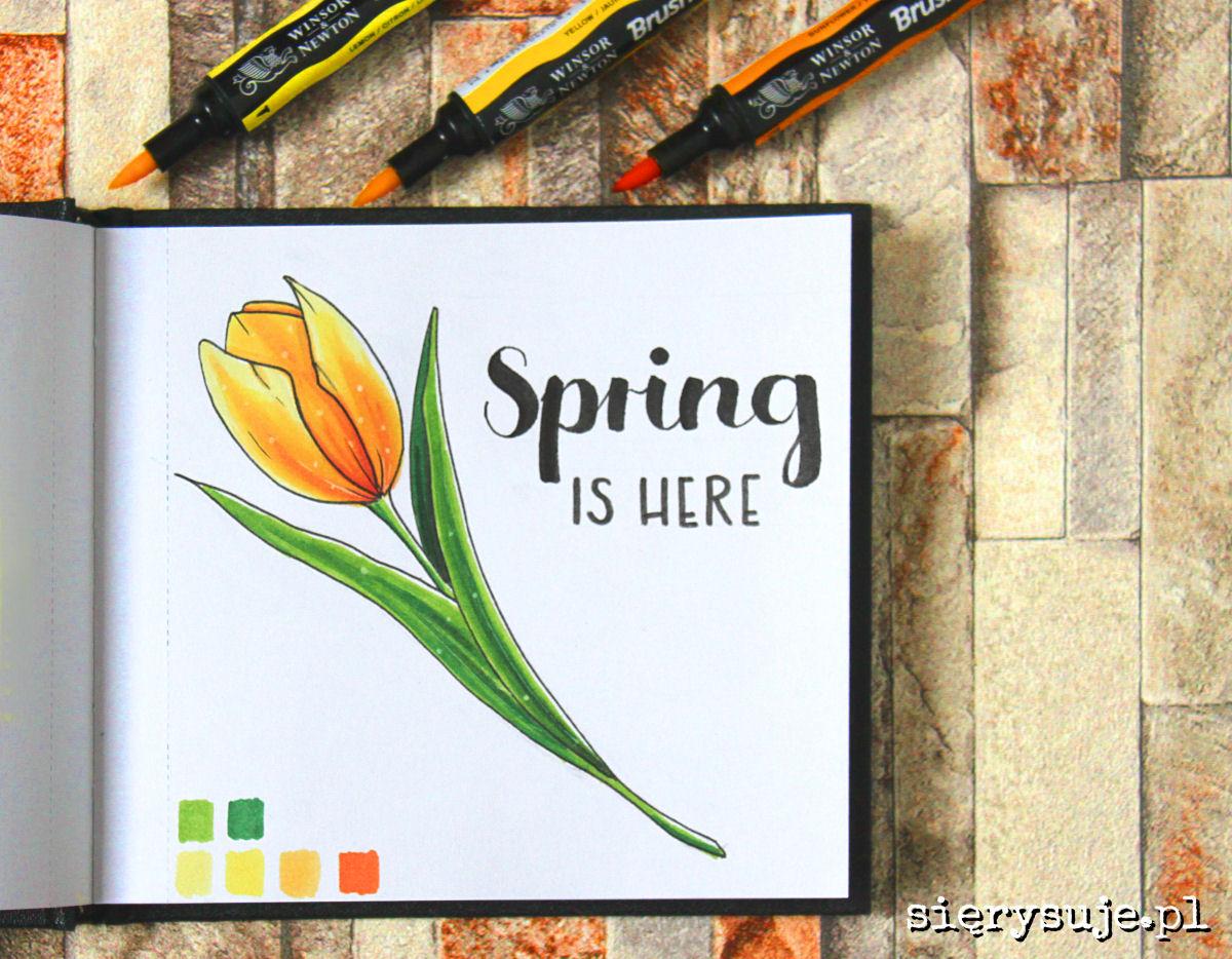 sierysuje.pl tulipan markerami