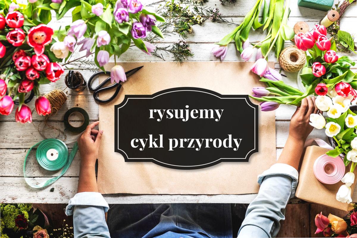 sierysuje.pl koło fenologiczne rysunek botaniczny