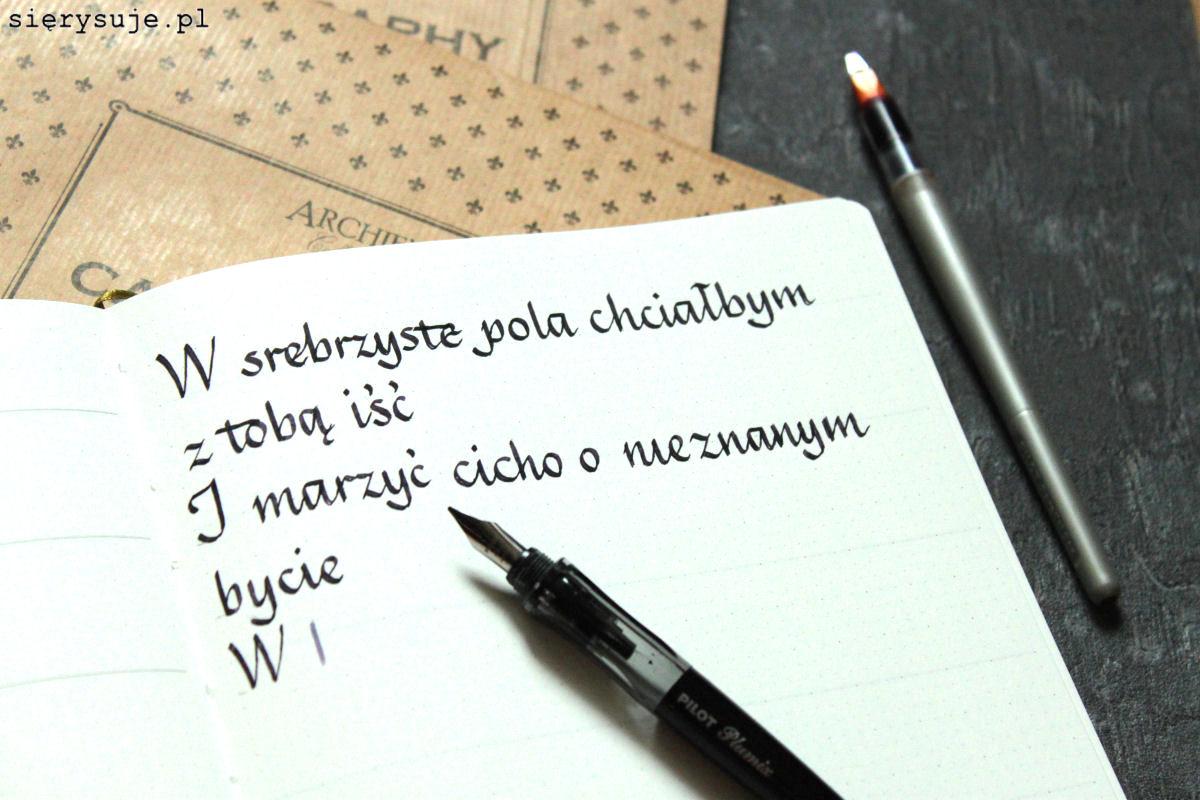 sierysuje.pl archie's calligraphy planer italik