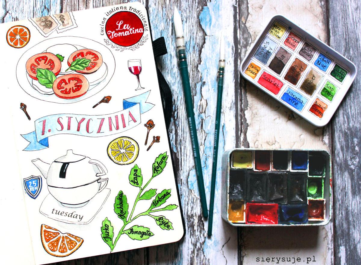 sierysuje.pl ilustrowany dziennik draw your dar visual diary